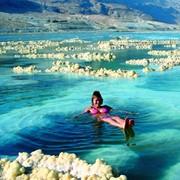 Тур оздоровительный От Средиземного до Мертвого моря фото