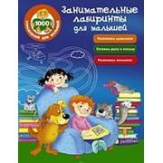Книга. Занимательные лабиринты для малышей фото