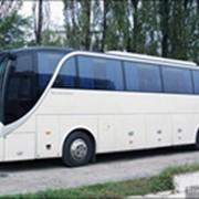 Автобусы прочие фото