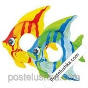 Круг Тропическая рыба intex 59219 94х80 см. фото