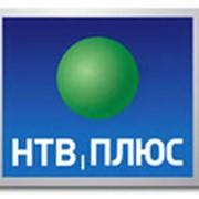 НТВ+ Модуль Smit CI+ Договор 1200 фото
