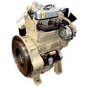 Двигатель TSS DIesel TDL 19 2L фото