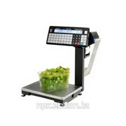 Печатающие торговые весы ВПМ-Т1 с устройством подмотки ленты фото