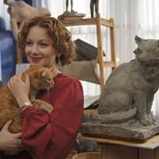 Кот для съемок в кино фото