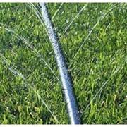 Система капельного полива для огорода Поливайка фото