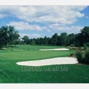 Мини-гольф площадка Питч энд патт фото