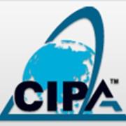 Дистанционное образовательное тестирование, курсы CAP/CIPA для бухгалтеров и аудиторов фото