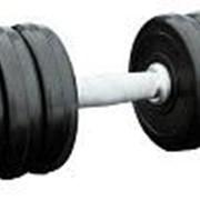 Гантель профессиональная IronKing 29 кг фото
