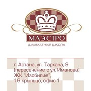 Образовательные услуги, шахматная школа Маэстро фото