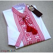 Повседневная белая мужская рубашка с красной вышивкой (Б-24) фото