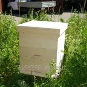 Ульи для пчел фото