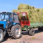 Платформа для транспортировки кормов и льна ПТК-10 фото