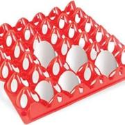 Лотк пластиковый на 30 яйц фото