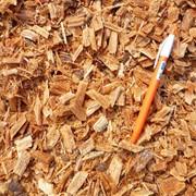 Щепа топливная древесная (хвойных пород) фото