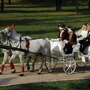 Аренда карет, экипажей, саней, лошадей фото