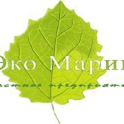 Экологическое обеспечение предприятий фото