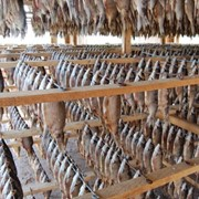 Рыба вяленая: лещ, плотва, густера, бычок, окунь, щука, судак фото