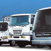 Продажей и ремонтом автобусов и грузовых машин фото