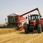 Продажа и ремонт сельскохозяйственной техники фото