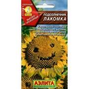 Сырье семечек подсолнечника Лакомка - кондитерское сырье сорта высшей категории фото