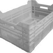 Ящик пластиковый пластмассовый полиэтиленовый ПЭТ крупногабаритный для продуктов: молока, мяса, птицы, рыбы и продуктов из них фото