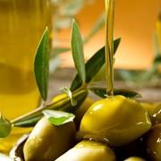 Оливковое масло первого холодного отжима, нерафинированное, производство Греция. фото