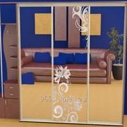 Зеркало для шкафов купе 23012 фото