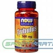 Tribulus 500 100капс фото