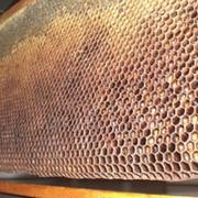 Пчелы цена, купить, продажа Украина фото