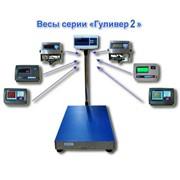 Весы напольные фасовочные МП 60 ВЖА Ф-2 Гулливер 450х600 фото
