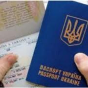 Оформление загранпаспортов. фото