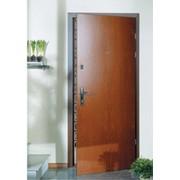 Дверь металлическая входные повышенной стойкости на взлом Троя фото