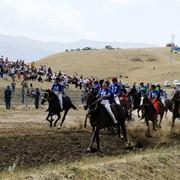 Организации национальных соревнований по всем видам конного спорта РК фото