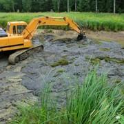 Очистка прудов и водоемов фото
