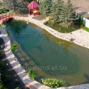 Искусственный пруд, декоротивный водоем, пруд для купания- выполнение работ, подбор оборудования, обслуживание. фото