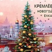 Кремлевская Елка 2014-2015 фото