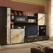 Мебель для гостиной Сакура фото