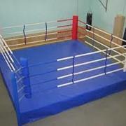 Ринги боксерские фото