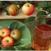 Концентраты яблочного сока фото