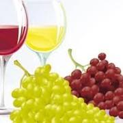 Виноградарство и виноделие фото