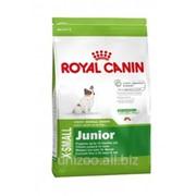 Сухой корм для щенков Royal Canin X-SMALL JUNIOR 0,5 кг фото