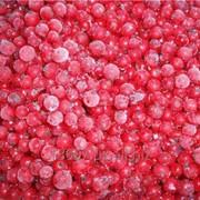 Замороженная смородина красная фото