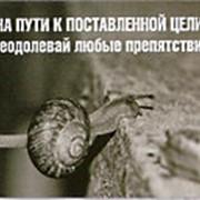 """Магнит картонный """"На пути к поставленой цели"""" фото"""