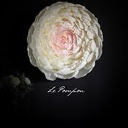 Объемная картина-цветок 3D фото