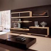 Элитная мебель под заказ Украина фото
