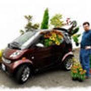 Международная доставка цветов фото