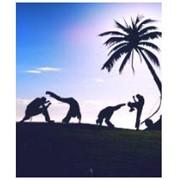 Афро-бразильское боевое искусство капоэйры фото