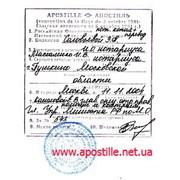 Легализация документов (МинЮст, МинОбразования. МИД) фото