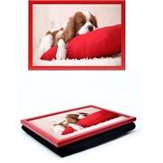 Поднос с подушкой lap-tray фото