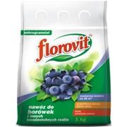 "Удобрение ""Для брусники и голубики"" (FLOROVIT), 1 кг фото"